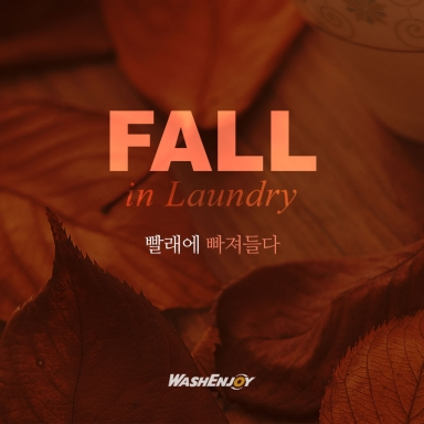 Fall in Laundry_1