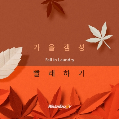 Fall in Laundry_3