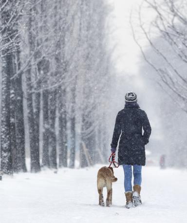 눈 오는 날 입었던 겨울 옷 세탁방법, 종류별 겨울 외투 관리 방법